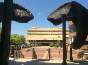 VCU-Harris-Hall-through-Ram-horns